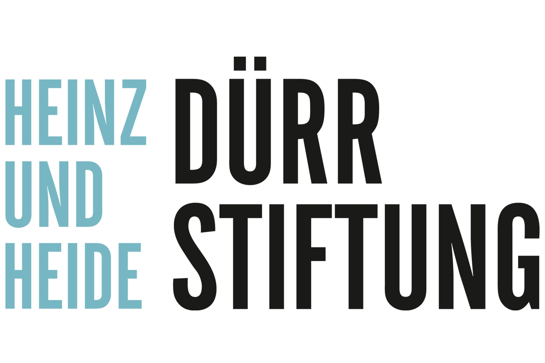 Heinz und Heide Dürr Stiftung Logo